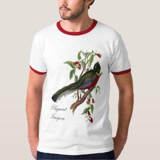 Ejemplo elegante del vintage de Trogon de Juan Playera