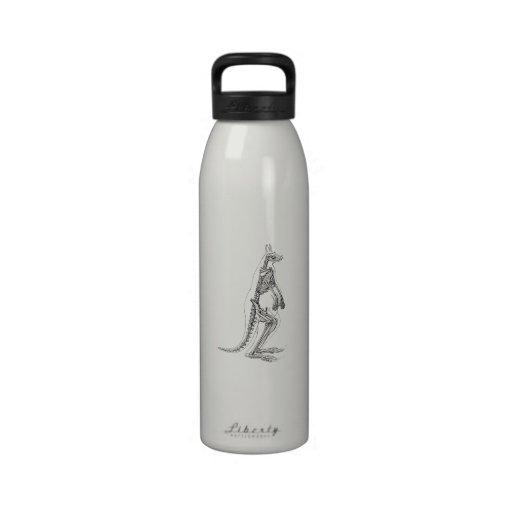 Ejemplo esquelético del canguro del vintage - 1800 botellas de agua reutilizables