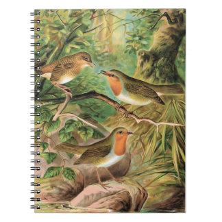 Ejemplo europeo del pájaro del vintage del petirro libro de apuntes con espiral