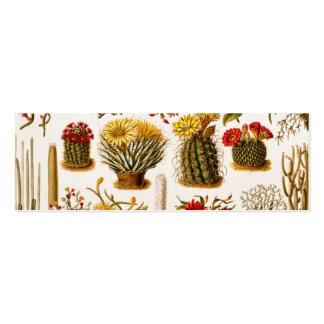 Ejemplo floral 1911 de la flor del cactus del vint tarjetas de visita