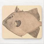 Ejemplo gris del Triggerfish Alfombrilla De Ratones