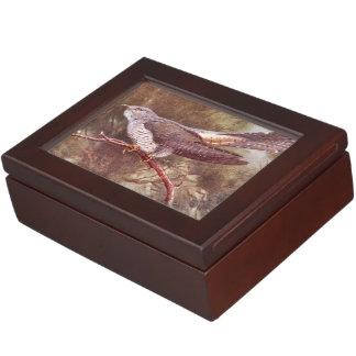 Ejemplo gris del vintage del cuco caja de recuerdos