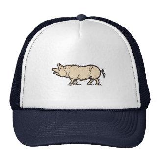 Ejemplo guarro de la antigüedad del cerdo del gorro