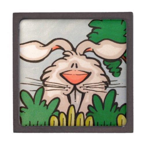 ejemplo lindo del conejo cajas de joyas de calidad