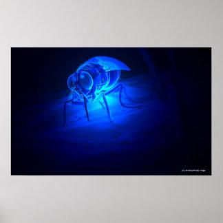 Ejemplo luminescente de una mosca de tsetse póster