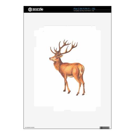 Ejemplo masculino de los ciervos del vintage iPad 2 calcomanías