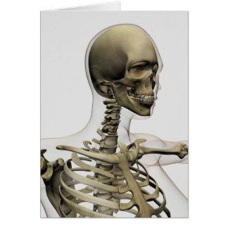 Ejemplo médico de un cráneo de las mujeres y tarjeta de felicitación