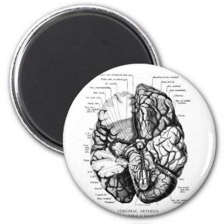 Ejemplo médico del vintage del kitsch su cerebro imán redondo 5 cm