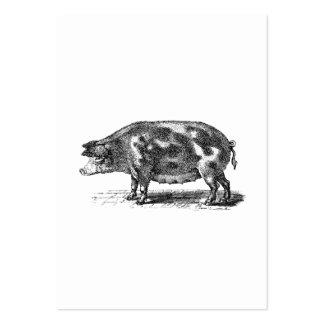 Ejemplo nacional del cerdo del vintage - cerdo tarjetas de visita grandes