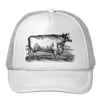 Ejemplo personalizado Bull de la vaca de Durham Gorro