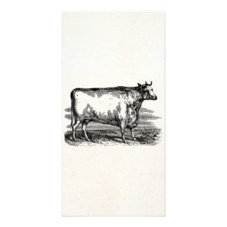 Ejemplo personalizado Bull de la vaca de Durham Tarjeta Personal Con Foto