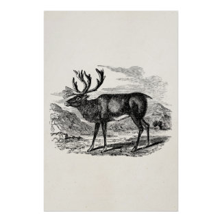 Ejemplo personalizado reno de los ciervos del impresiones