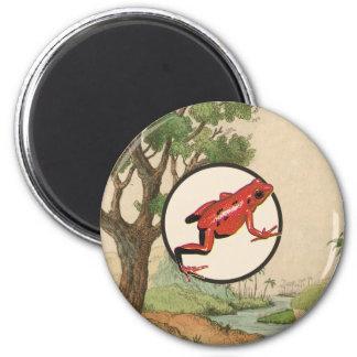 Ejemplo rojo del hábitat natural de la rana del imán de nevera