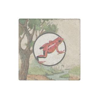 Ejemplo rojo del hábitat natural de la rana del imán de piedra