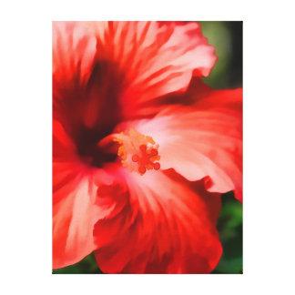 Ejemplo rojo vibrante del hibisco lienzo envuelto para galerías
