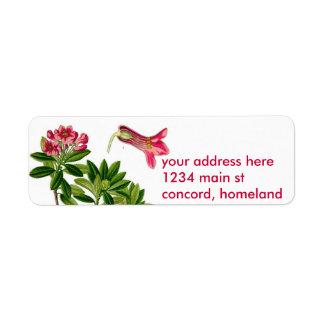 Ejemplo rosado del rododendro etiquetas de remite