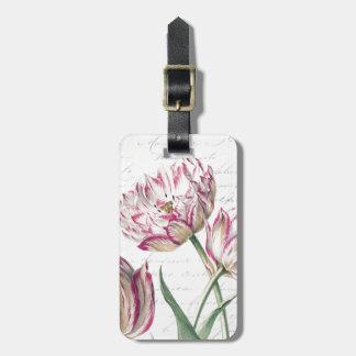 Ejemplo rosado y blanco botánico del tulipán etiquetas bolsas