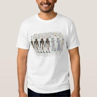 Ejemplos de hieroglyphics de las tumbas de t camisas