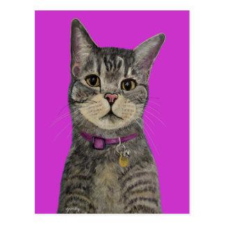 Ejerce de chulo el gato postal