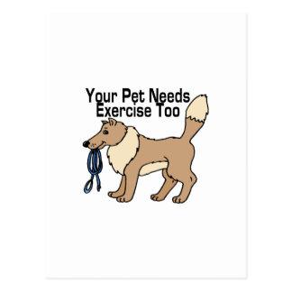 Ejercite a su mascota tarjeta postal