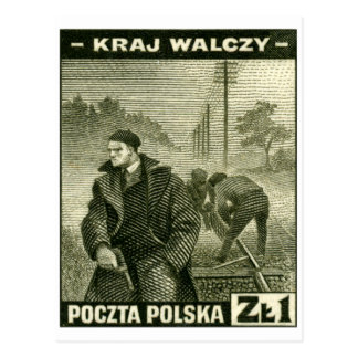 Ejército casero polaco de WWII Postales