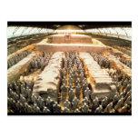 Ejército de la terracota, dinastía de Qin, 210 Tarjeta Postal