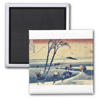 Ejiri de Sunshu por Katsushika, Hokusai Ukiyoe. Imán Para Frigorifico