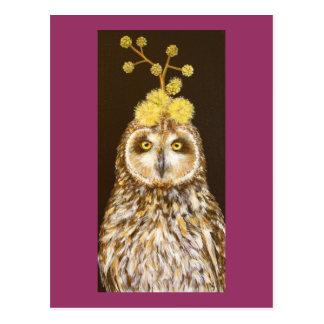 Ekewaka pueo short eared owl postcard