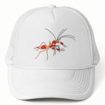 ekos shrimp cap