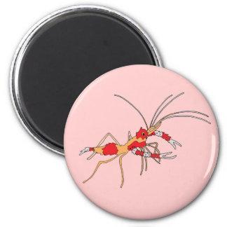 ekos Shrimp Magnet