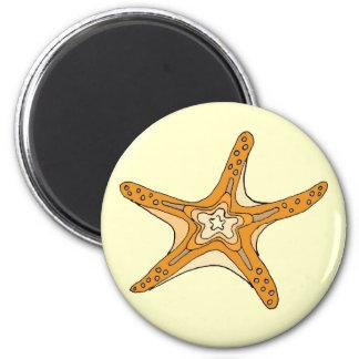 ekos Starfish Magnet