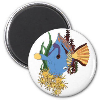 Ekos Surgeonfish Magnet