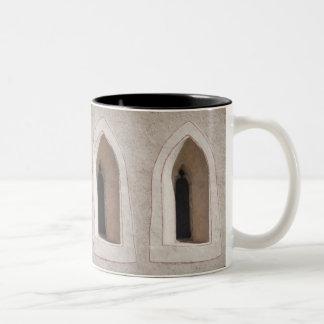 ekos window Mug