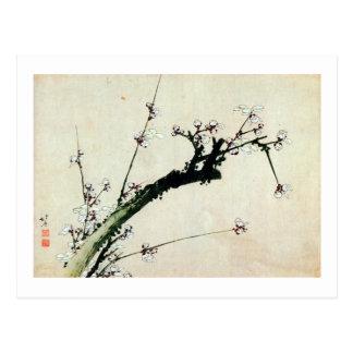 el 梅花, ciruelo del 北斎 florece, Hokusai, Ukiyo-e Postal