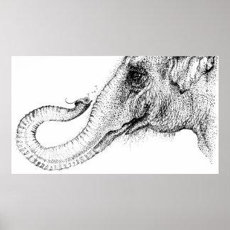 El 100% fiel de un elefante por Inkspot Poster