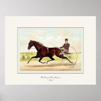 El ~ 1884 de Johnston del marcapasos del campeón Póster