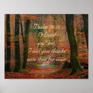 El 30:12 del salmo da gracias al señor Poster