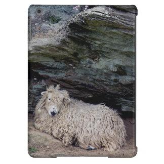 El abrigar largo desaliñado del sur de las ovejas  funda para iPad air