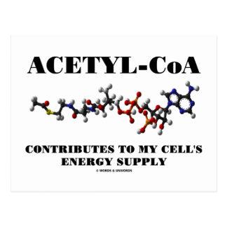 El Acetilo-CoA contribuye al suministro de energía Postal
