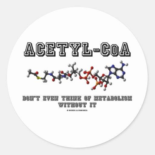 El Acetilo-CoA incluso no piensa en metabolismo fu Etiquetas