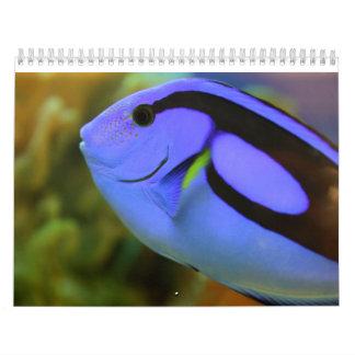 El acuario calendario