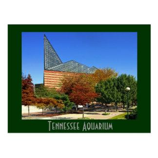 El acuario de Tennessee - Chattanooga, TN. Tarjeta Postal