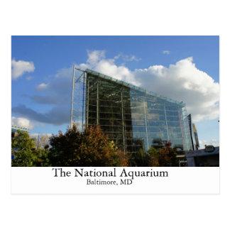 El acuario nacional tarjetas postales