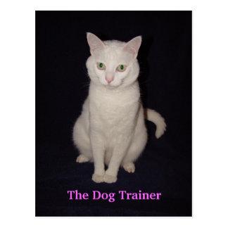 El adiestrador de perros postal