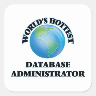 El administrador de la base de datos más caliente pegatinas cuadradas personalizadas