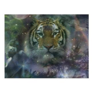 El agacharse salvaje del tigre de los ojos hermoso tarjetas postales