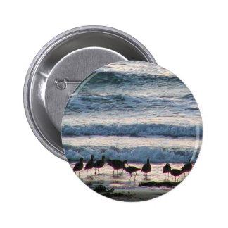 El agua del océano vara puesta del sol de la arena pins