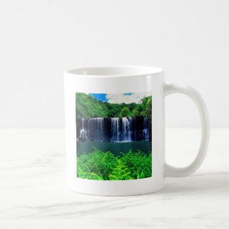 El agua recluida cae Kauai Taza