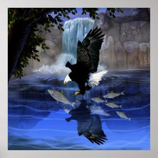 El águila y la cascada poster