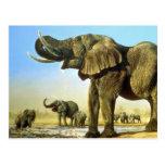 El agujero de agua, elefantes tarjetas postales